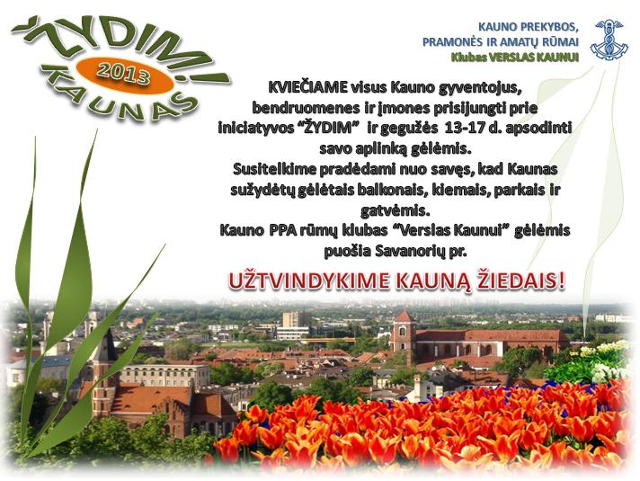 Žydim Kaunas 2013