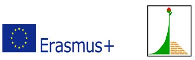 Erasmus + programa skirta visoms jaunimo socialinėms grupėms
